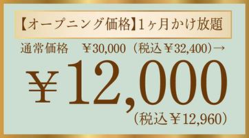 オープニング価格¥12,000